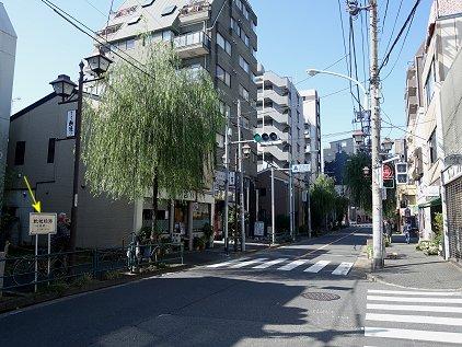 yanagi_ave.JPG